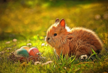 Sweet Easter Bunny - colored eggs, basket, grass, flowers, adorable, bunny, sweet