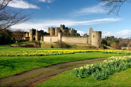 Spring Flowers at Alnwick Castle, UK - flowers, medieval, uk, castle