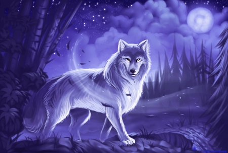 Mystic Wolf Other Abstract Background Wallpapers On Desktop Nexus Image 2478811