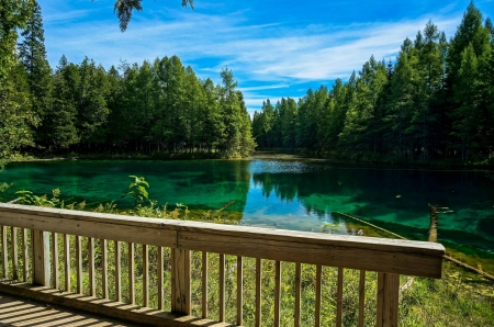 Michigan's largest natural freshwater spring - forest, michigan, bridge, usa, reflections