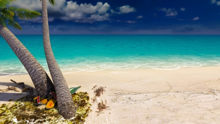 Tropical Beach - Ocean, Beach, Tropical, Tree, Palm