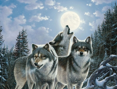 Wolves chorus - mary pettis, moon, luna, lup, painting, wolf, night, art, howl, pictura