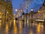 Christmas on the Champs Elyses