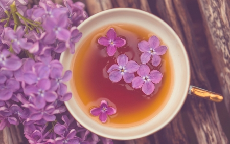 Lilac Tea - flowers, mug, tea, mood, lilac