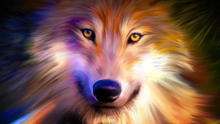 Colorful Wolf - Other & Animals Background Wallpapers on ...