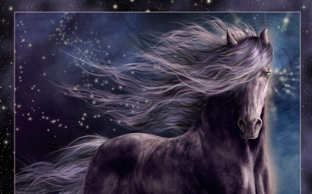 Blackie - beautful, mane, colored, long, blackish, mare, horse, blue