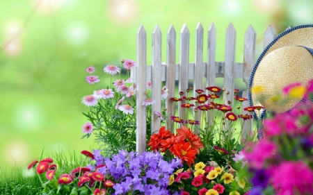 Colors of Summer - art, fence, digital, flowers, blossoms, hat