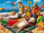 Cats on the beach