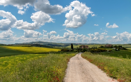 Road in Tuscany, Italy - clouds, road, Italy, Tuscany, fields, landscape