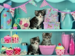 Kittens and cupcakes