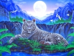 Moonlit of White Tiger