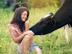 Cows Like Cowgirls . .