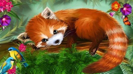 Red Panda Other Animals Background Wallpapers On Desktop Nexus Image 2490173