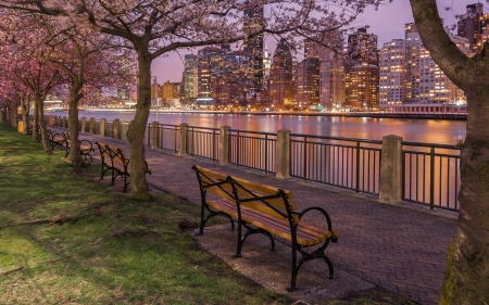 East River Promenade - New York, USA, promenade, benches, evening, river, trees, skyscrapers