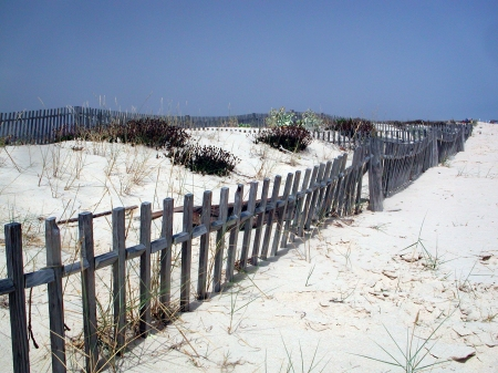 Fishermen's Beach Fences - graphics, artistic, beach, fences