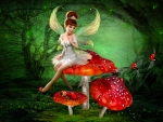 Fairy and Lady Bugs