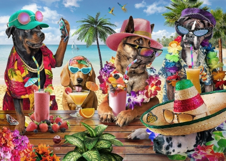 Summer Party Dogs Animals Background Wallpapers On
