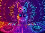 Disco Dingo Dog
