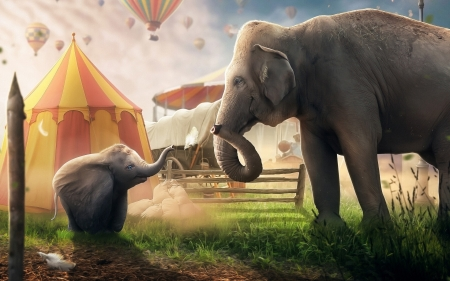 Dumbo - Disney, elephants, movie, Dumbo, circus