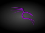 Black and Purple Kali Linux