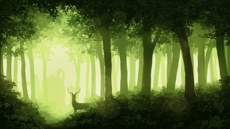 Morning Forest Fantasy Abstract Background Wallpapers On Desktop Nexus Image 2495285