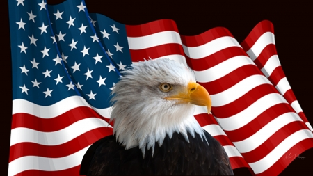 PRIDES OF AMERICA - flag, Ameraican eagle, patriotic, Memorial Day, red white and blue, America, bird, usa, bald eagle, Independence Day, pride, 4th of July