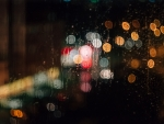 Lights, rain, night