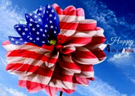 4 Of July Flower - Red, Sky, White, Blue, 4th, July, Of, Flower