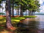 West Point Lake, Anderson Park, Alabama