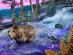 Bear in a stream