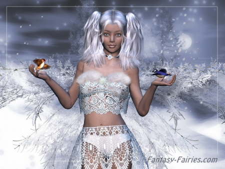 Lovely Snow Fairy - wings, fantasy, sky, fairy