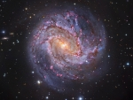 M83 The Thousand-Ruby Galaxy