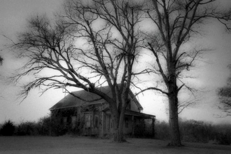 Black And White Scary House Forests Nature Background