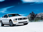 Ford Mustang V6 Pony