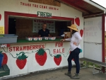 Cowgirl At A Fruit Stand . .