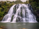Owhoroa Falls, New Zealand