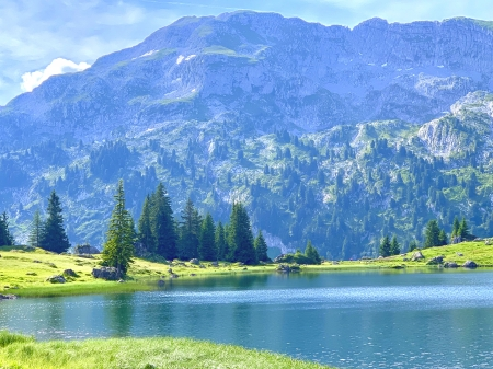 Mountain lake - beautiful, nature, trees, outdoor, lake, pretty, lovely, mountain, water, peaceful, magical