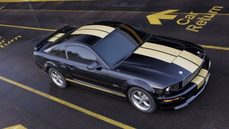 Ford Mustang Shelby GTH - ford mustang, ford, cars, vehicles, shelby, black cars