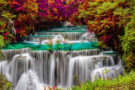 Forest cascades - cascades, trees, colorful, forest, waterfall, beautiful