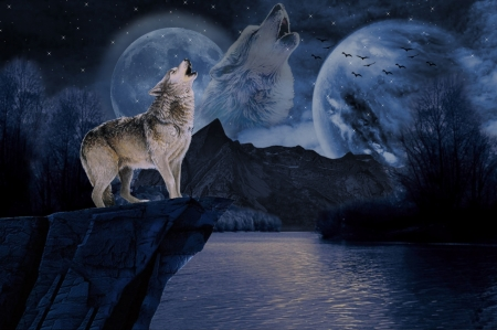 WOLF - WOLF, WATER, NIGHT, MOON, MOUNTAINS