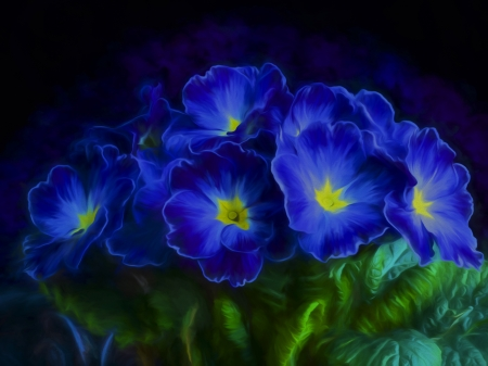 Blue flowers - flower, black, petal, blue