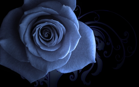 Abstract blue rose - black, petal, rose, blue