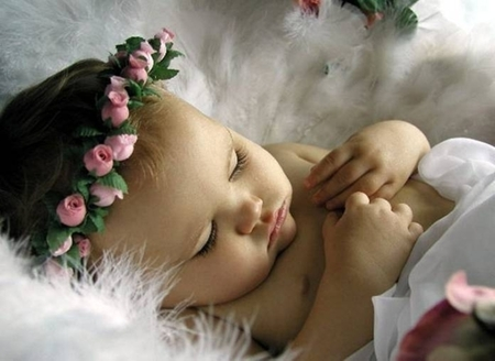 The in Enduring Love for a child - sleep, roses, blanket, sleeping, baby, sweet, cute, head band, people, precious, fur, other
