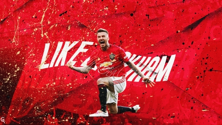 David Beckham - soccer, manchester united, beckham, becks, legend, football, david beckham