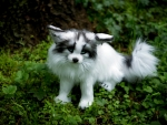 Toy Arctic Marble Fox