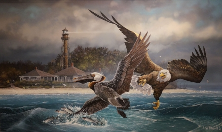 Eagle Attack on Pelican - painting, raptor, coast, sea, art