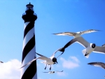 Cape Hatteras Lighthouse,Outer Banks North Carolina
