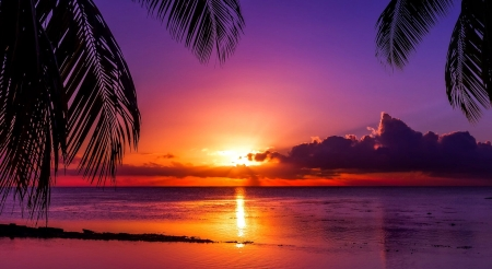 Tahiti sunset - Tahiti, ocean, tropical, sky, palms, sea, sunset, purple, paradise, reflection
