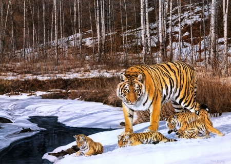 Tigers - tigru, tiger, pictura, winter, iarna, art, mother, cute, painting, simon combes, cub