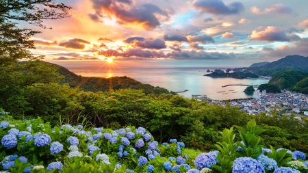 Amazing sunset - hills, hydrangea, Japan, view, town, sunset, sky, sea
